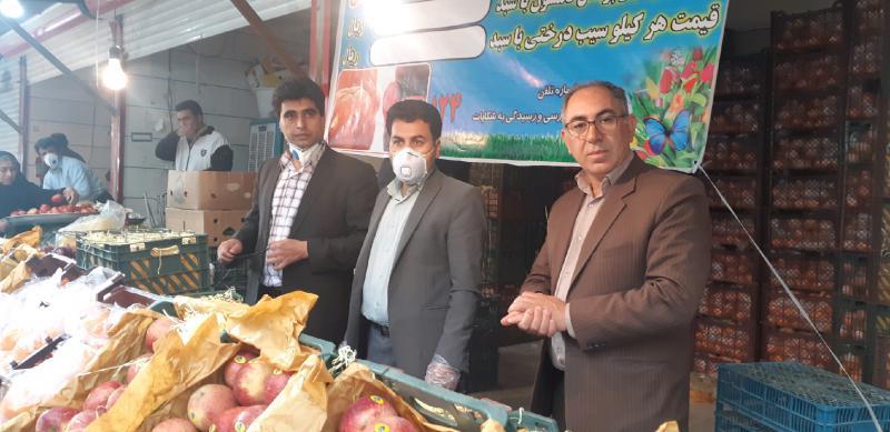 توزیع میوه طرح تنظیم بازار در شهرستان